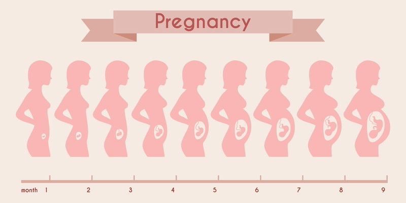 Gravid første tegn